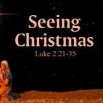 Seeing_christmas_half
