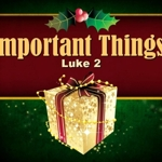 Important_things_half