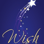 2012-01-wish-highlight_half