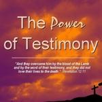 Power_of_testimony_-_anatomy_half