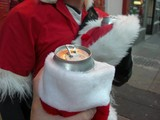 Naughty Santas Ticketed for Boozing in Washington Square Park