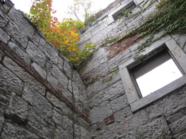 Weeds and small trees have sprouted from the roof of the Seaman-Drake Arch, Oct. 13, 2009.