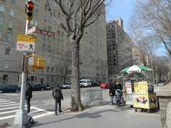 Central Park Vendors Vy For Prime Real Estate