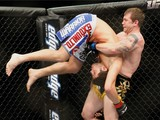 State Assembly Puts Chokehold on Mixed Martial Arts in New York