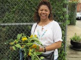 City Officials Agrees on New Rules to Protect Community Gardens