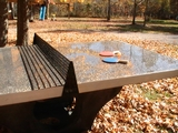 Ping-Pong Stars to Attend Unveiling of Table in Tompkins Square Park