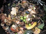Food Scraps Wanted: City's Expanded Compost Program Launches Friday