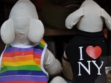 Majority of New Yorkers Support Gay Marriage
