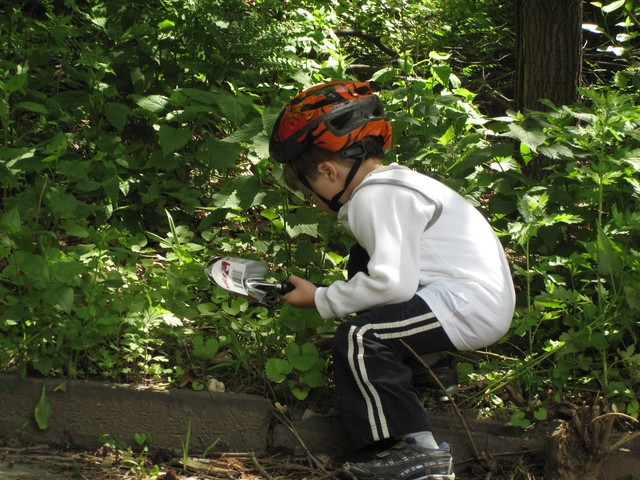 Even the youngest hands helped prune the rocky area along one entrance to the park.