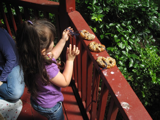 Marina del Solar makes pretzel, peanut butter and sesame seed treats for neighborhood birds.