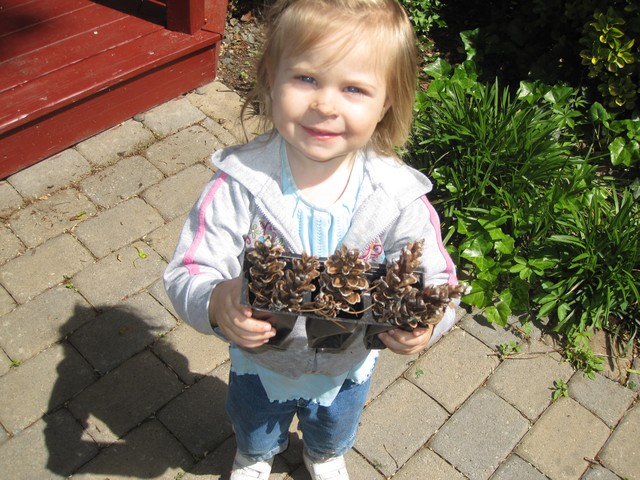 Georgiana Schumacher gets creative with pine cones from Bruce's Garden on Park Terrace East.