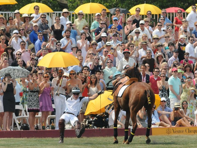 Prince Harry fell off his horse at one of the summer's hottest events on Governors Island, a polo match that drew more than 10,000 people.