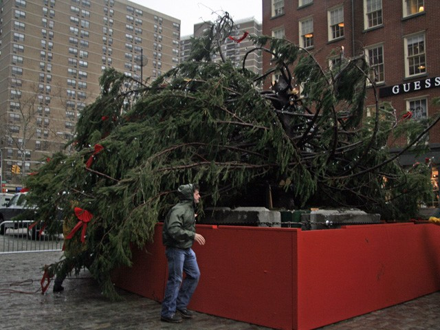 Workers try to secure the Christmas tree at the South Street Seaport amidst the heavy wind.