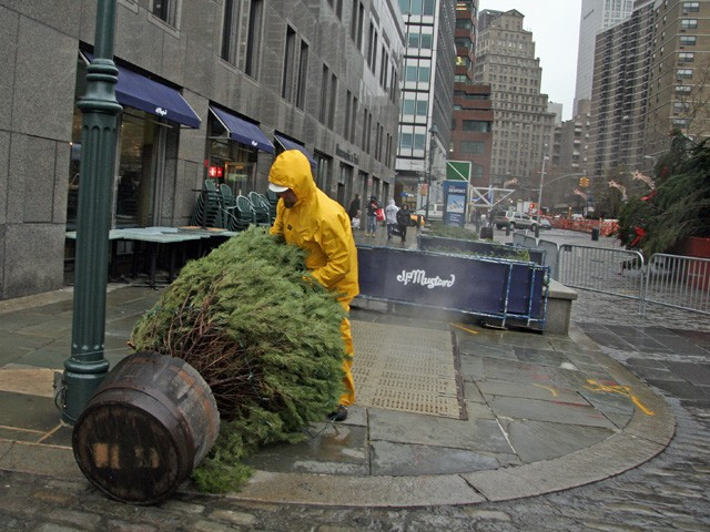 Heavy winds on Fulton Street caused smaller trees to fall down.