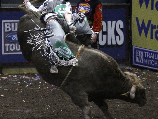 Kody Lostroh, of Longmont, Colo., rides Smack Down during last year's Professional Bull Riders Invitational at Madison Square Garden.