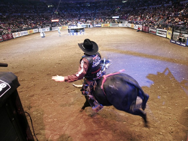 Brendon Clark leaves the chute during the championship round at the Professional Bull Riders Versus Invitational at Madison Square Garden on Jan. 6, 2008.