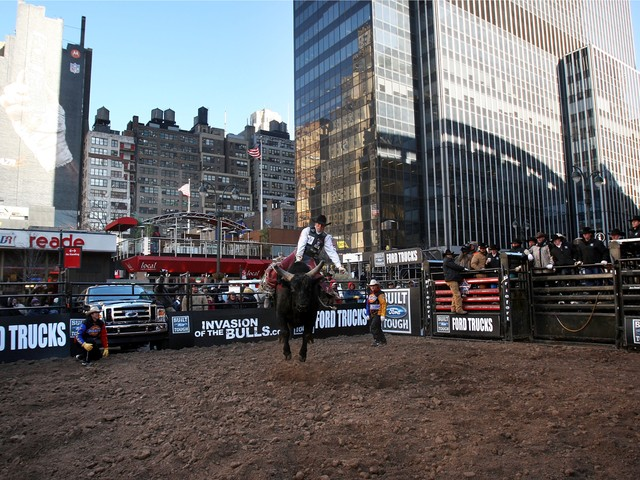Professional bull riders hold a demo exhibition outside of Madison Square Garden Jan. 3, 2008.