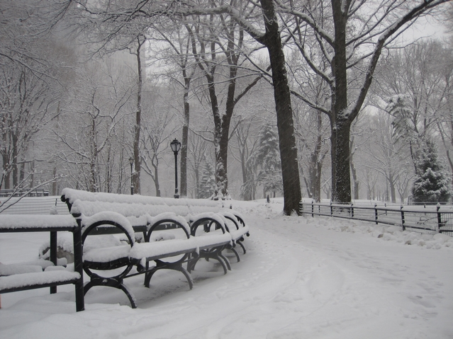 Central Park looked like a winter wonderland Monday morning.