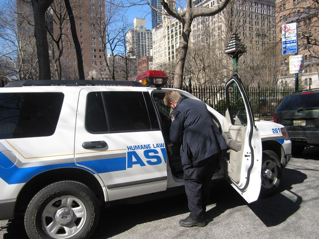 The ASPCA on the scene at Gramercy Park on Tuesday.