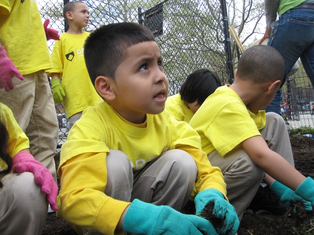 Kids from Harlem RBI's Dream Charter School planting on a once trash-strewn lot.