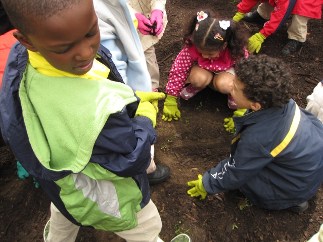Kids from Harlem RBI's Dream Charter School plant wildflowers in a once trash-strewn lot.