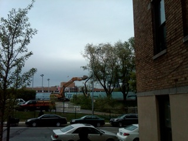View of backhoe toppling tree at Baker Field taken with cell phone camera on Park Terrace East.