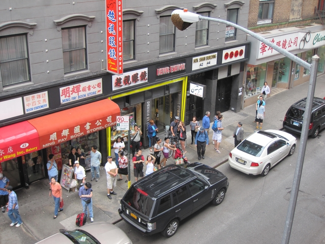 A crowd gathered on Mott Street Monday afternoon to look at the swarm.