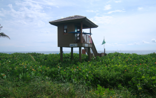 Delray Beach Life Guard Tower