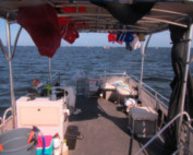 scalloping in florida