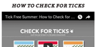 How to check for ticks [video]