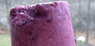 Fruit smoothie protein popsicles