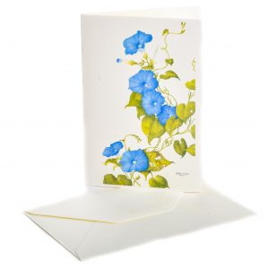 Handmade flower note cards of Daffodils, Bittersweet, Morning Glory and VA Blue Bells.