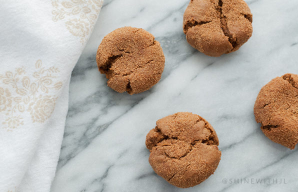 gluten free dairy free paleo gingersnap recipe shinewithjl