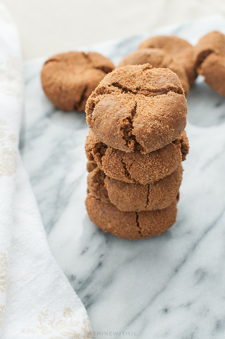 gluten free dairy free gingersnaps recipe shinewithjl