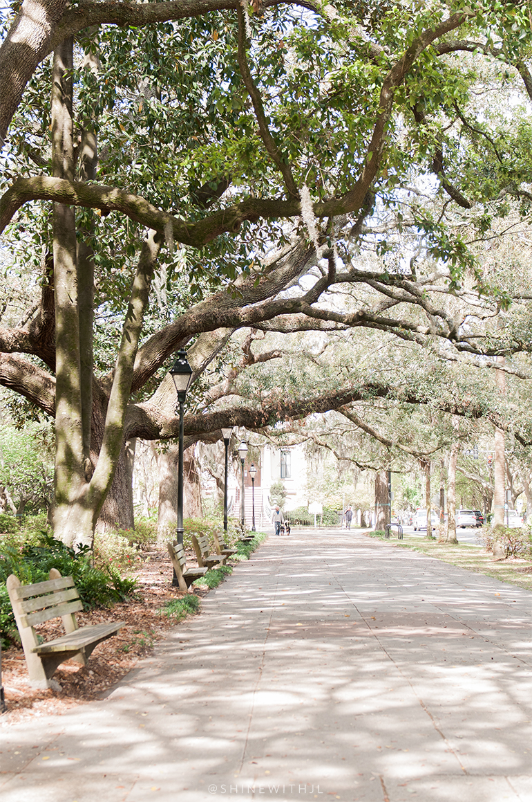 gaston street forsyth park shinewithjl