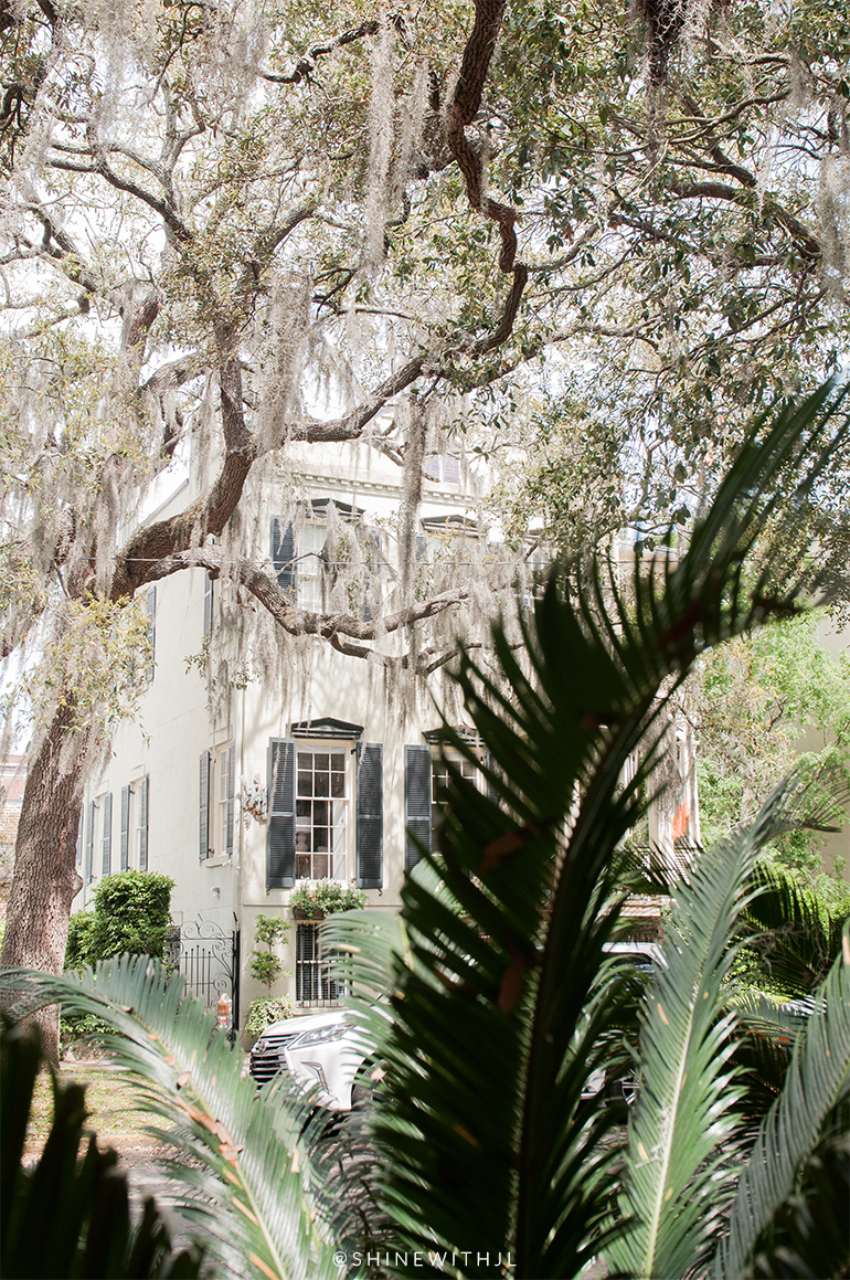 historic savannah home viewed through palm fronds