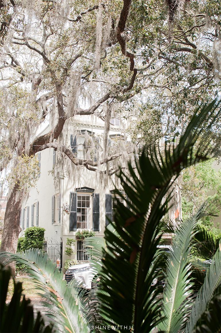 historic savannah home viewed through palm fronds