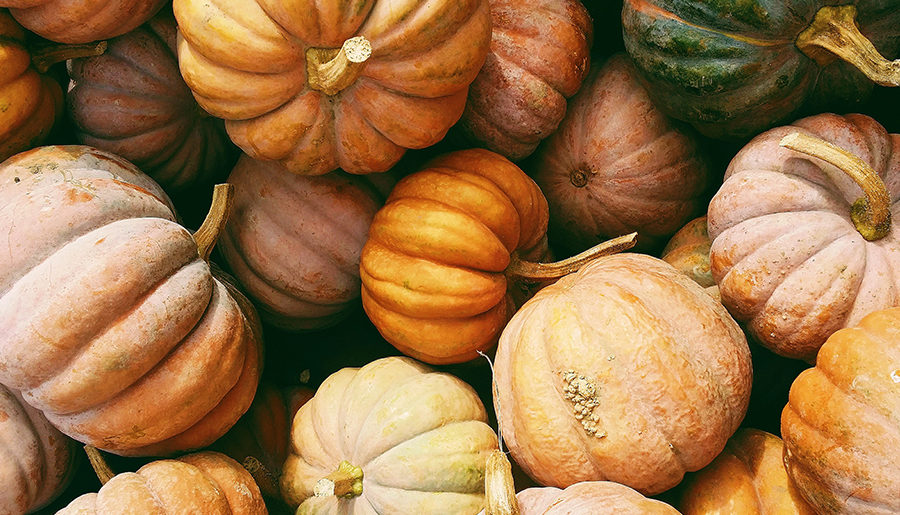 My Top 5 Pumpkin Recipes for Fall 2018