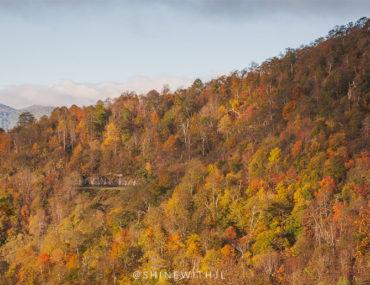 fall foliage map blue ridge parkway pisgah national forest north carolina