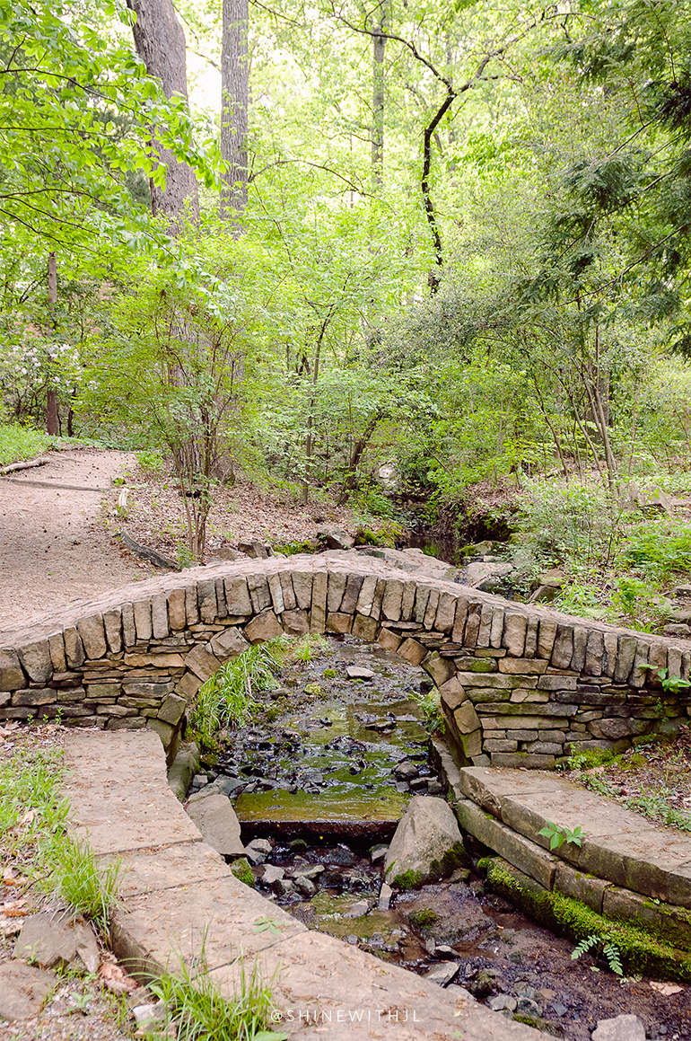 stone bridge over water University of Charlotte Botanical Gardens April