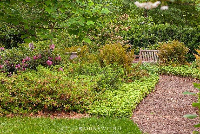 things to do in charlotte duke mansion garden