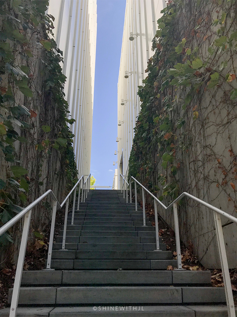 ivy covered staircase going up to high museum of art atlanta