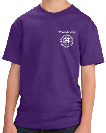 Harand Theatre Camp - Sun Logo Left Chest White Print Youth Purple Stock Model Front 1 Thumb