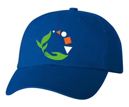 Muskegon Montessori Academy for Envrionmental Change Low Profile Hat Royal Blank with Depth