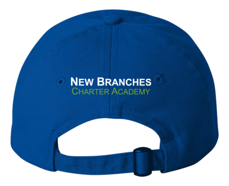 New Branches Logo Low Profile Hat Royal Blank with Depth