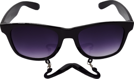 Mustache Sunglasses Front View