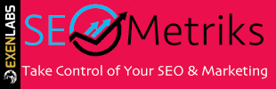 SEO Metriks Marketing Platform