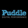 Puddle Digital Ltd - Ecommerce Designer / Marketer / Setup