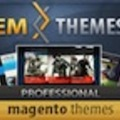 EMThemes - Ecommerce Designer / Developer