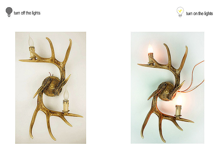 Deer Antler Lighting Collection 2 Lights Wall Lamp